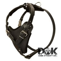 'Worthy Mighty Kobe' Attack Training Leather Harness